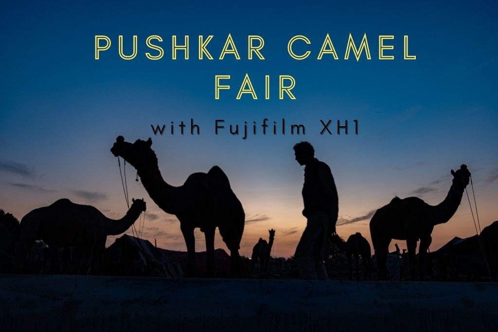 Pushkar Camel Fair Photography Tips