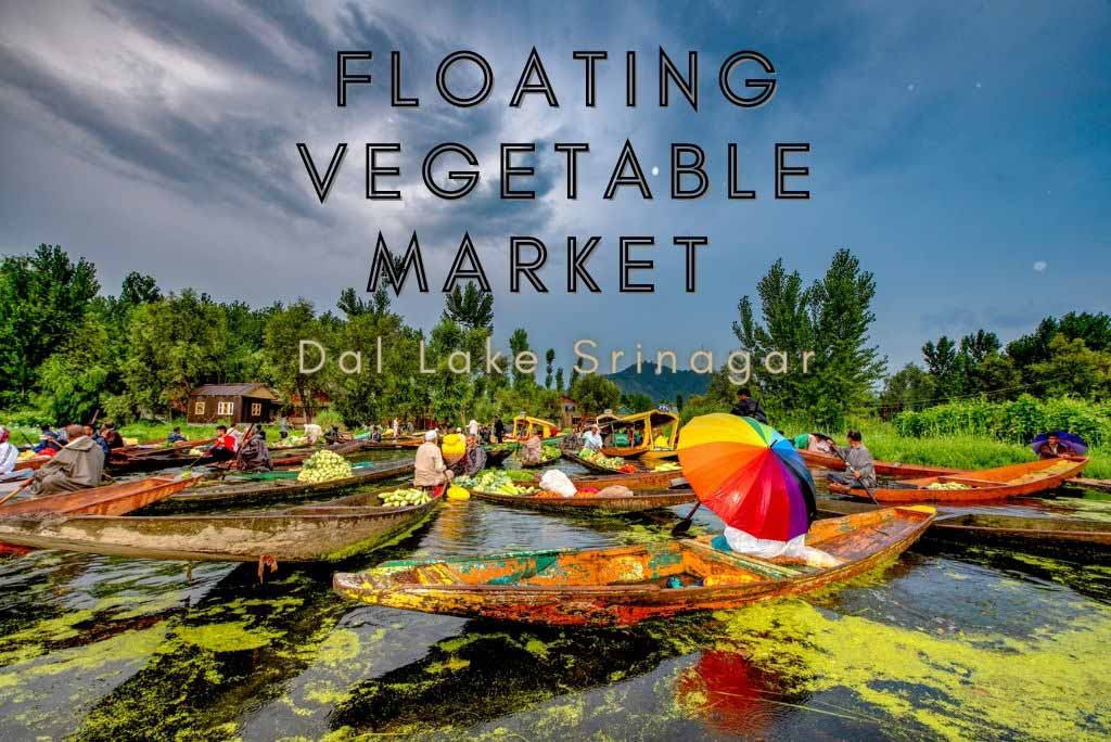 Floating Vegetable Market on Dal Lake in Srinagar